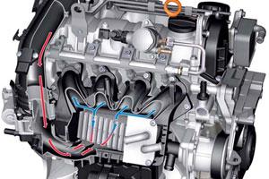 Volkswagen Polo technisch bekeken (2009-10)