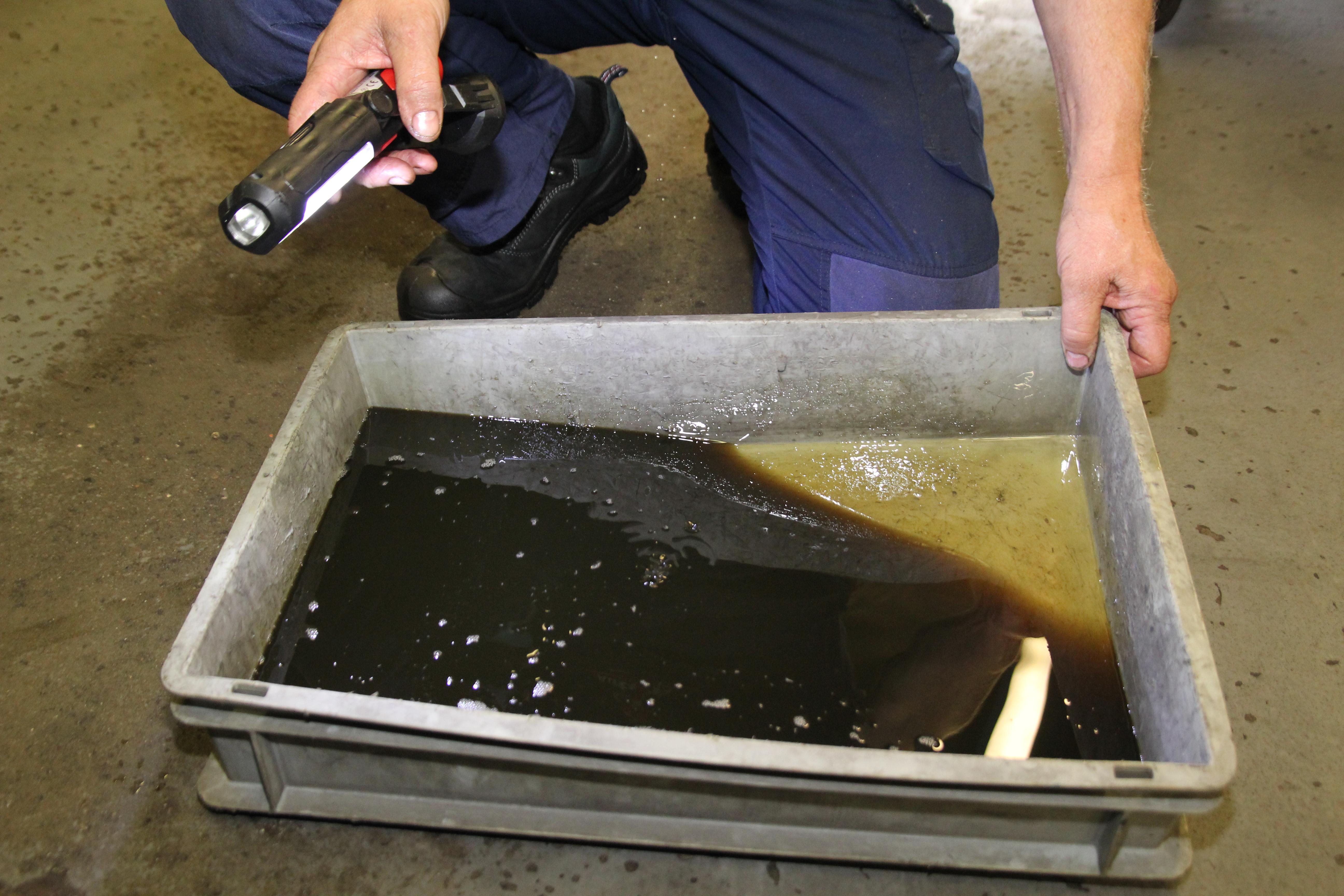 Autrans stap voor stap dsg-olie vervangen 2 (1)